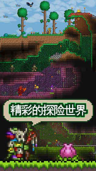 泰拉瑞亚1.2中文破解版 安卓版截图4
