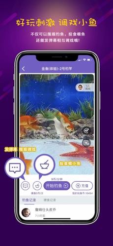 玩鱼 V2.1.1 安卓版截图4