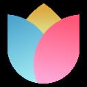 小米画报 V2.0.0.16 官方PC版