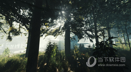 森林1.07联机修改器