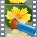 ABSoft Neat Video Pro(AE视频降噪插件) V5.0.2 官方版