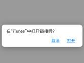 迅雷Beta iOS版怎么下载 安装方法