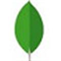 MongoDB Compass(数据库管理软件) V1.18.0 官方版
