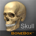 BoneBox Skull Viewer(头骨查看助手) V2.0.0 Mac版