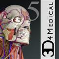 Essential Anatomy(基本解剖学软件) V5.0.6 Mac版