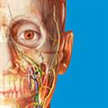 2019人体解剖学图谱 V2019.1.12 Mac版