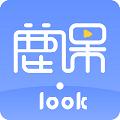 鹿课Look V2.1.3 官方版