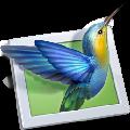 PTE AV Studio Pro(幻灯片制作软件) V10.0 破解版