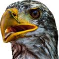 Photiosity(模糊图像处理软件) V1.7.0 Mac版
