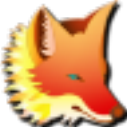 Foxtable(狐表数据管理软件) V2016 永久开发版