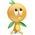 轻燕学员培训管理系统 V2007 绿色免费版