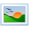 Insects Screensaver(昆虫主题屏幕保护程序) V1.0 官方版