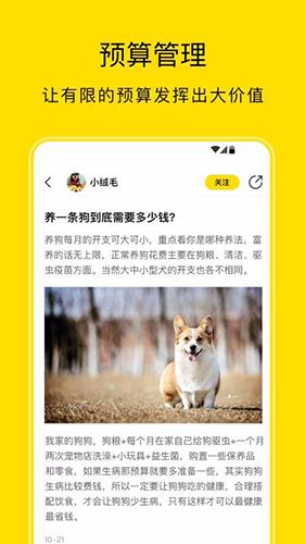 小绒宠物 V1.1.2 安卓版截图2