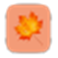 枫叶网站SEO快速收录工具 V1.0 绿色免费版