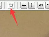 PhotoZoom中如何裁剪图片 这个操作帮你忙