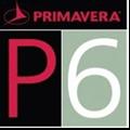 P6项目管理软件 V7.0 中文免费版
