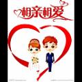 诸葛八字合婚试用版 V1.0.0 官方版