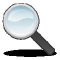 SWF Seeker(Flash提取工具) V2011 免费版