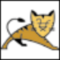 Apache Tomcat V6.0.48 官方版