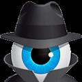 Hetman Internet Spy(网络间谍扫描工具) V2.0 免费版