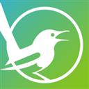 喜喳喳 V1.1 安卓版