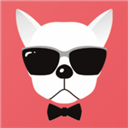 奇异狗 V1.1.2 安卓版