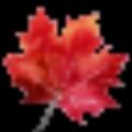 枫叶多线程代理验证工具 V1.0 绿色免费版