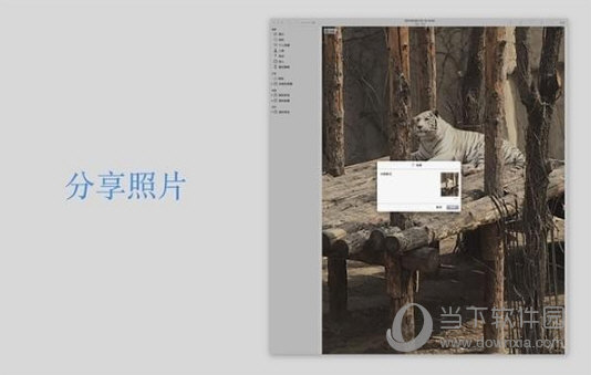 咕唧Poster