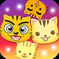 星猫广场 V2.1.1.0 安卓版