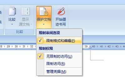 限制格式和编辑