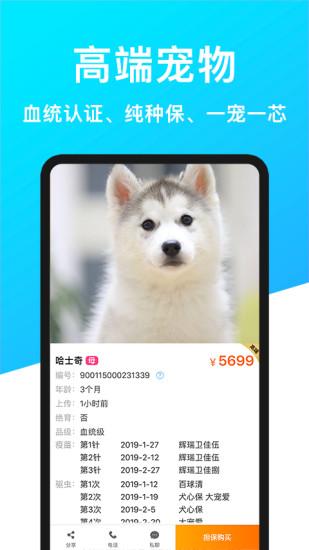 宠物市场 V5.2.2 安卓版截图3
