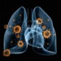新型肺炎疫情实时动态查询工具 V1.0.0 绿色免费版