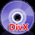 枫叶DivX格式转换器 V1.0 官方版