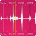 录音助手 V1.0.0 安卓版