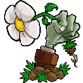 植物大战僵尸Mac破解版