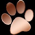 DebugDrawHook(编程调试软件) V5.0 绿色版