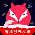 飞狐视频下载器最新版 V3.1.0.190903 官方PC版