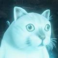 只狼MUR猫MOD 绿色免费版