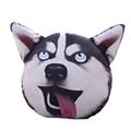 手机防盗犬 V1.5.1 安卓版
