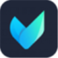 Vidmore(多功能视频处理器) V1.0.32 破解免费版
