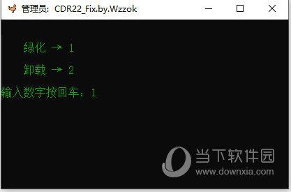 CDR2020精简版