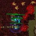 魔兽闯关大作战 V1.6 官方最新版
