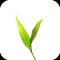 微博士家长端 V5.0.9 安卓版