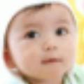 中华取名王免注册版 V2011.84 最新免费版