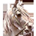 骑马与砍杀2存档备份小工具 V1.1 绿色免费版