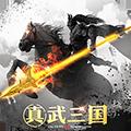 真武三国 V 1.0 安卓版