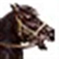 骑马与砍杀破解补丁 V1.174 3DM版