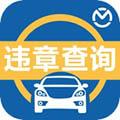 汽车违章查询 V7.8.8 最新PC版