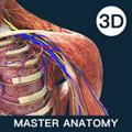 解剖大师 V1.0.0 安卓版