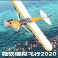 微软飞行模拟器电脑版 V2020 最新免费版